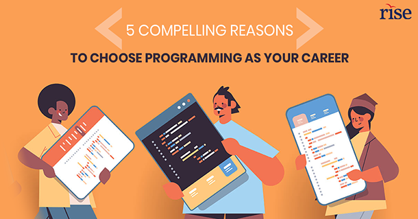 reasons to select programming as career